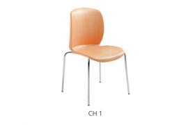 c01-ch1